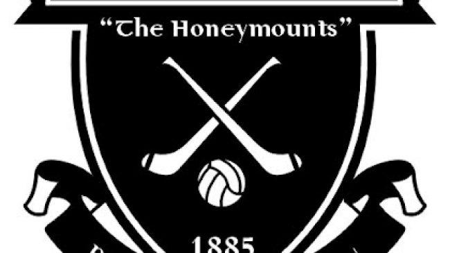 Moneygall GAA Club