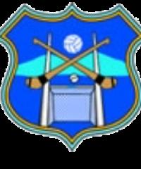 Ballylooby/Castlegrace GAA Club